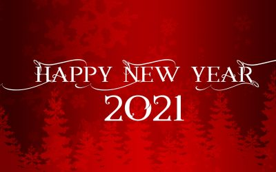 Happy New Year, 2021!